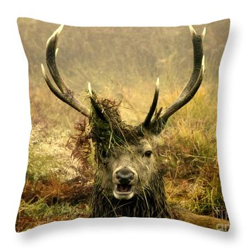 Stag Party The Series. One More For The Road Throw Pillow