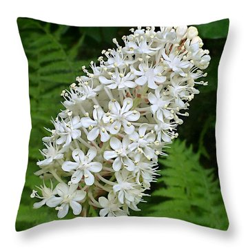 Stagger Grass Lily Throw Pillow by William Tanneberger