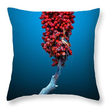 Throw Pillow featuring the photograph Staghorn Sumac by Brian Stevens