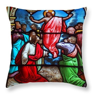 Throw Pillow featuring the photograph Stained Glass by Ed Weidman