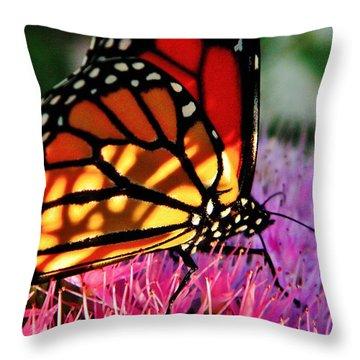 Stained Glass Monarch  Throw Pillow