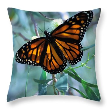 Stained Glass Wings Throw Pillow