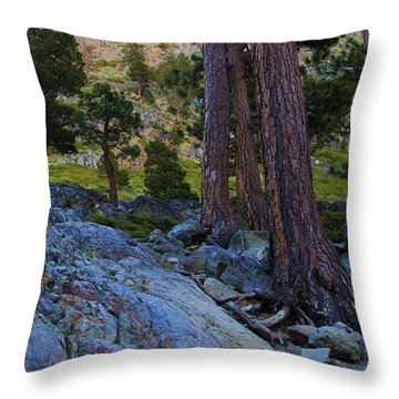 Throw Pillow featuring the photograph Stairway To Heaven by Sean Sarsfield