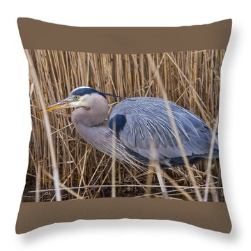 Stalking Fish In The Reeds Throw Pillow