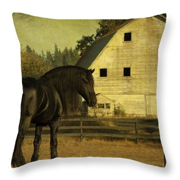 Stallion At Rest D1535 Throw Pillow by Wes and Dotty Weber
