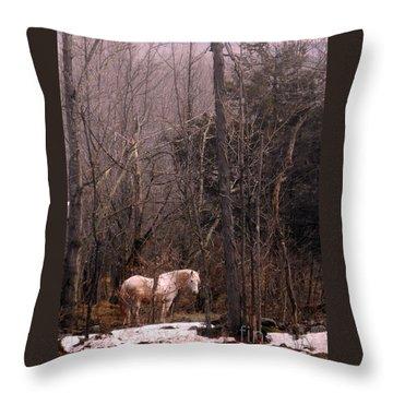 Stallion In The Mountain Pasture Throw Pillow by Patricia Keller