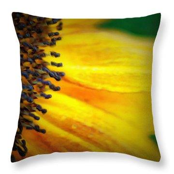 Stamen Velvet Throw Pillow