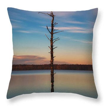 Stand Alone 16x9 Crop Throw Pillow