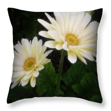 Stand By Me Gerber Daisy Throw Pillow by Lingfai Leung
