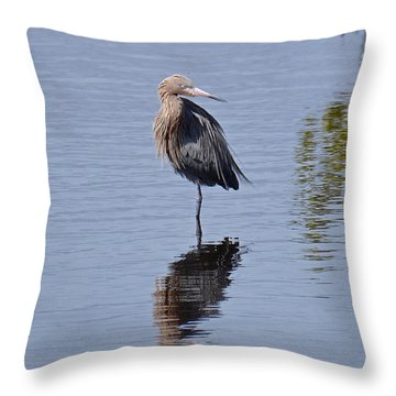Stand Up Comedian  Throw Pillow by Carol  Bradley