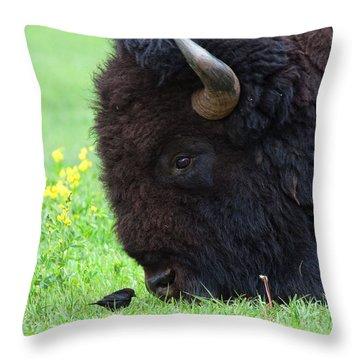 Stand Your Ground Throw Pillow by Jim Garrison