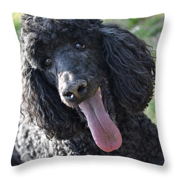 Standard Poodle Throw Pillow