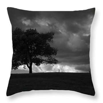 Standing Alone Throw Pillow by Lena Wilhite