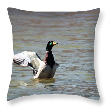 Standing Bear Lake Throw Pillow