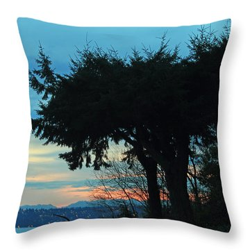 Standing Guard For Dawn Throw Pillow