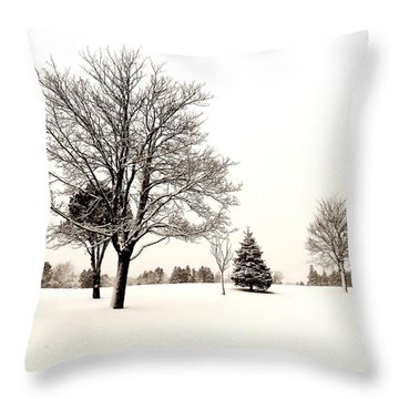 Standing In The Snow Throw Pillow by Zinvolle Art