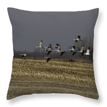 Standing Out 1 Throw Pillow