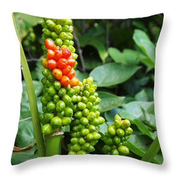 Throw Pillow featuring the photograph Standing Out In A Crowd by Deborah Fay