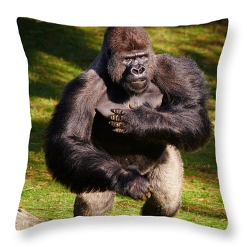 Standing Silverback Gorilla Throw Pillow