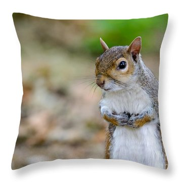 Standing Squirrel Throw Pillow
