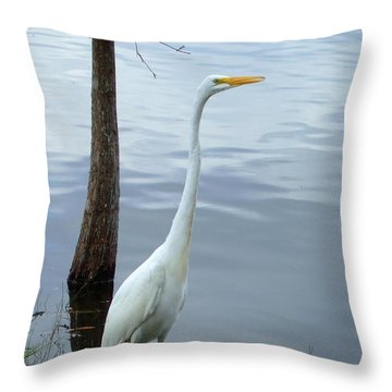 Throw Pillow featuring the photograph Standing Tall by Bob Sample