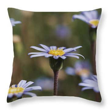 Standing Tall Throw Pillow by Caitlyn  Grasso