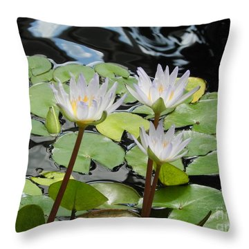 Throw Pillow featuring the photograph Standing Tall by Chrisann Ellis