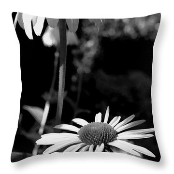 Throw Pillow featuring the photograph Coneflowers Standing Tall   by James C Thomas