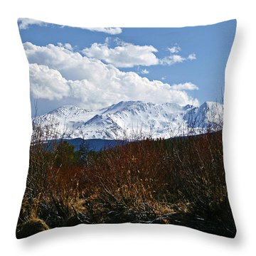 Standing Tall Throw Pillow by Jeremy Rhoades