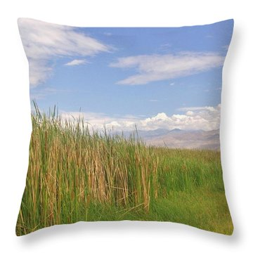 Throw Pillow featuring the photograph Standing Tall by Marilyn Diaz
