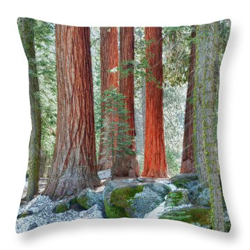 Standing Tall - Sequoia National Park Throw Pillow by Sandra Bronstein