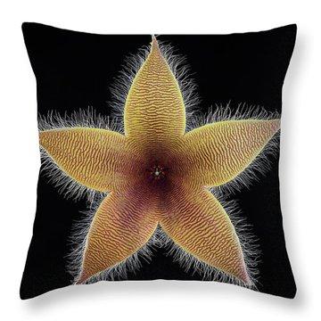 State Flower Throw Pillows