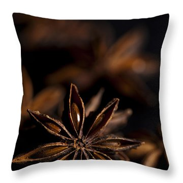 Star Anise Study Throw Pillow by Anne Gilbert