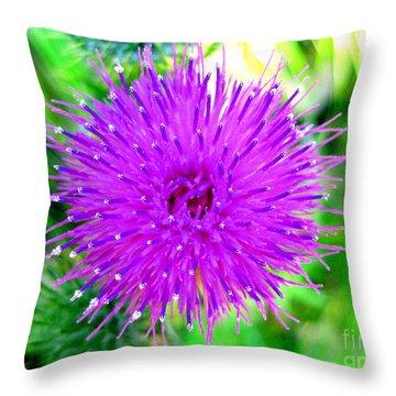 Throw Pillow featuring the photograph Star Burst by Kathy Bassett