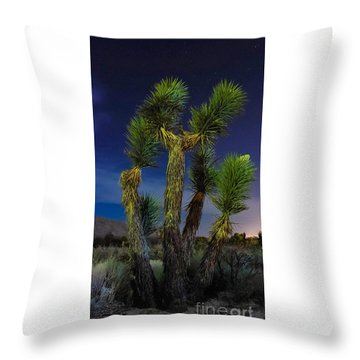 Throw Pillow featuring the photograph Star Gazing by Angela J Wright