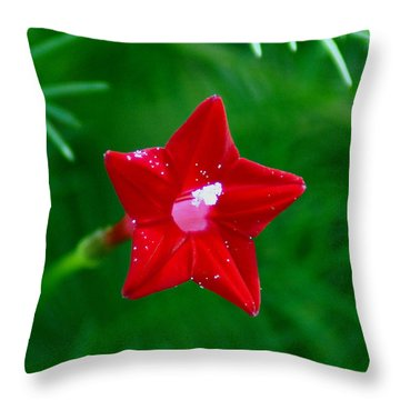 Star Glory Throw Pillow by Kim Pate
