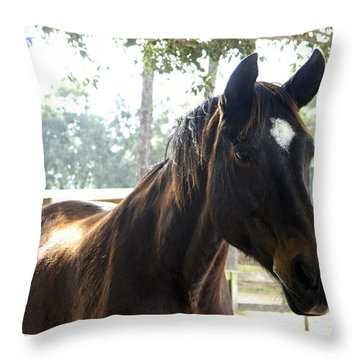 Star Throw Pillow by Laurie Perry