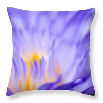 Star Of Siam Waterlily Throw Pillow by Priya Ghose