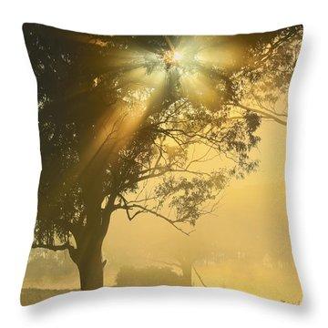 Star-shine Throw Pillow