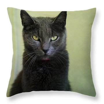 Stare Throw Pillow by Fraida Gutovich