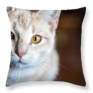 Stare Throw Pillow