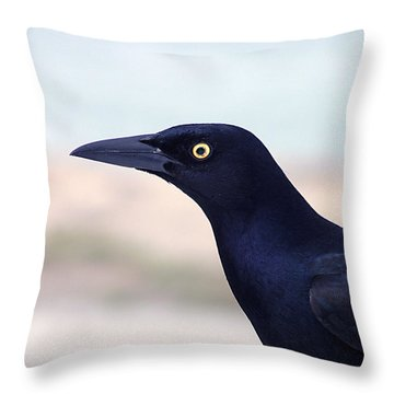 Stare Of The Male Grackle Throw Pillow