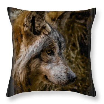 Stare Of The Wolf Throw Pillow by Ernie Echols