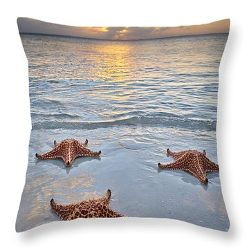 Starfish Beach Sunset Throw Pillow