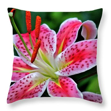 Stargazer Lily Throw Pillow