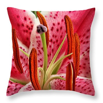 Stargazer Lily Throw Pillow by Mariola Bitner