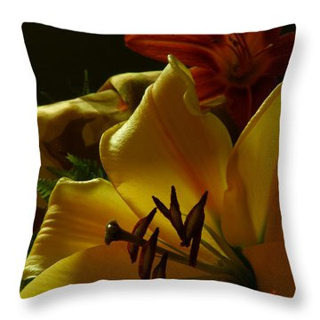 Stargazer2 Throw Pillow