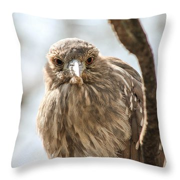 Staring Contest Throw Pillow