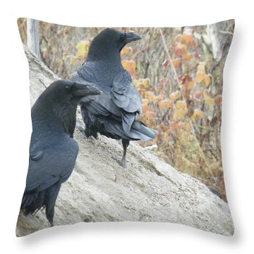 Throw Pillow featuring the photograph Stark Raven by Brian Boyle