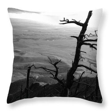 Stark Tree Throw Pillow by Mary Carol Story